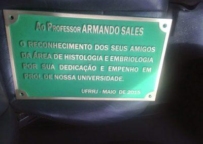 Placas-de-bronze-e-aluio-fundido-2-1-e1498863040496