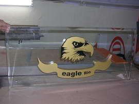 eagle_007